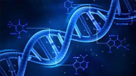 הרצאה למטפלים בלבד: אפיגנטיקה – זרם חדש במדע